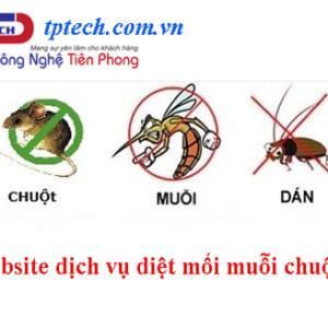 Thiết Kế Website Dịch Vụ Diệt Mối Côn Trùng Chuột Gián Rệp Chuẩn Seo